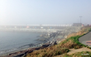 Breakwater Wall in the Fog Ogden Point