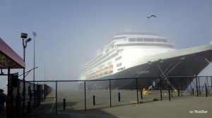 ms Zaandam ( fog lifting )