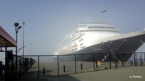 ms Zaandam ( fog lifting )