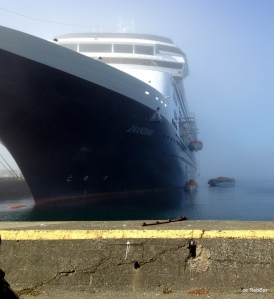 ms Zaandam  (fog)